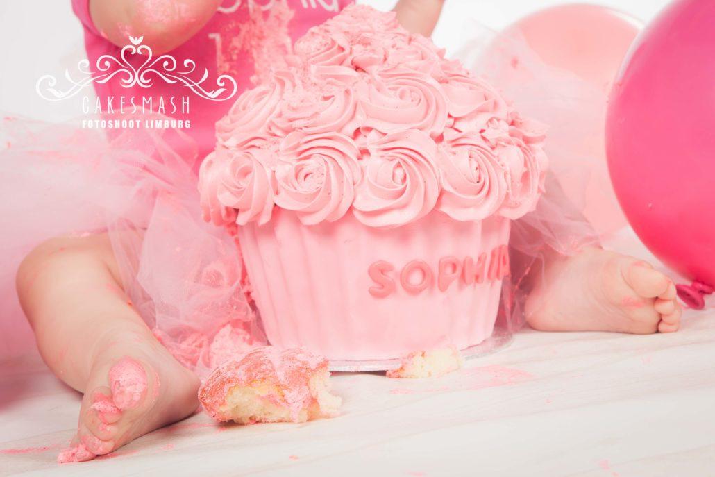 cakesmashfotoshoot-limburg-portfolio-4